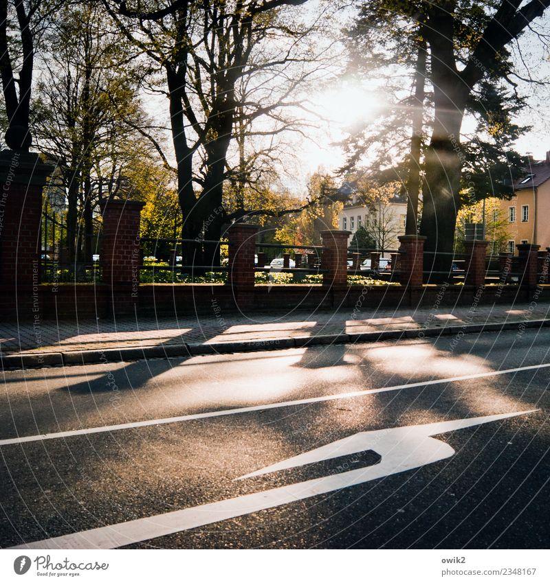 Kurve kriegen Sommer Baum Haus Straße Wand Mauer Deutschland leuchten glänzend Schilder & Markierungen Schönes Wetter Vergangenheit Zeichen Trauer Asphalt