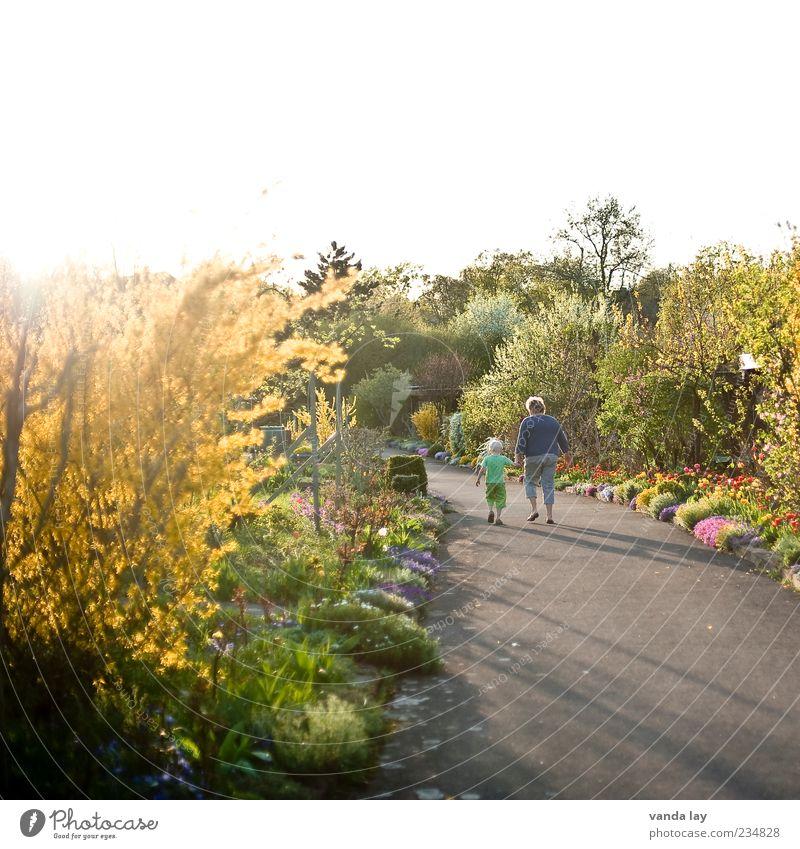 Gartenweg Mensch Kind Baum Pflanze Mädchen Blume Erwachsene Straße Leben Junge Wege & Pfade Garten Freundschaft Zusammensein Kindheit gehen