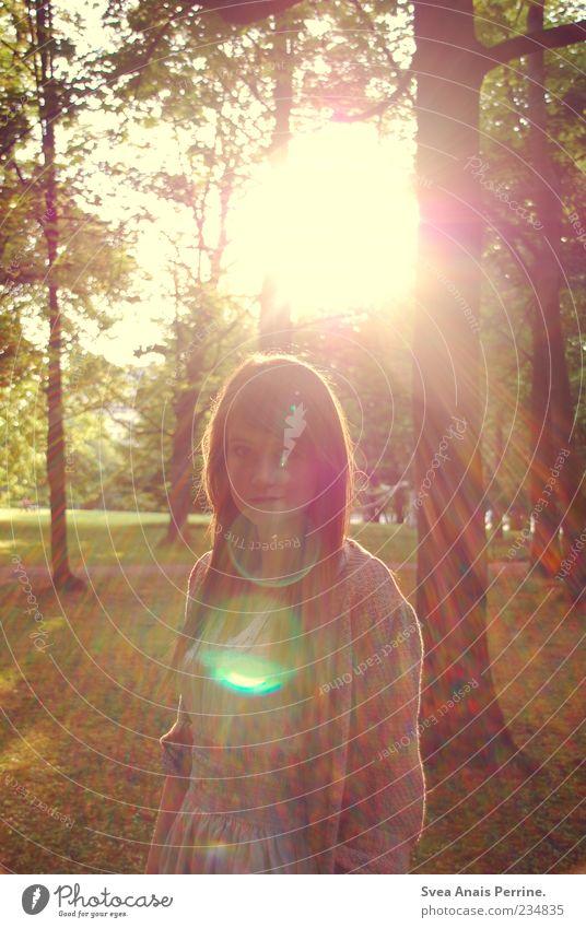 die grund angst und das neue gefühl. Mensch Natur Jugendliche schön Baum Sonne Blatt Erwachsene Umwelt feminin Haare & Frisuren Stil Park blond elegant natürlich