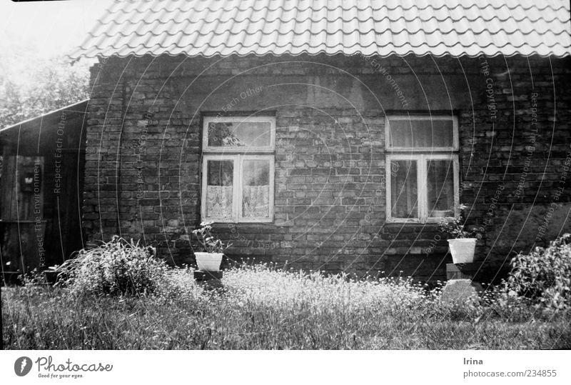 Vredebox | Tritt ein, bring Glück herein alt Haus Fenster Wand Gras Garten Mauer außergewöhnlich authentisch Dach historisch analog Altstadt Polen Backsteinwand