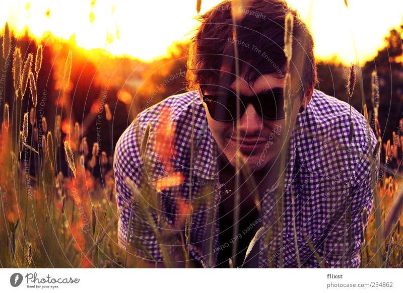 Buschmann maskulin Junger Mann Jugendliche 1 Mensch 18-30 Jahre Erwachsene Schönes Wetter Sträucher Feld Fröhlichkeit Zufriedenheit Frühlingsgefühle Optimismus