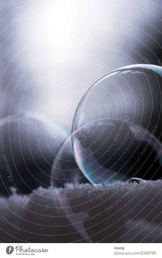 Die feine Welt der Seifenblasen kalt Hintergrundbild Traurigkeit außergewöhnlich Zusammensein Vergänglichkeit Kugel Sorge kugelrund