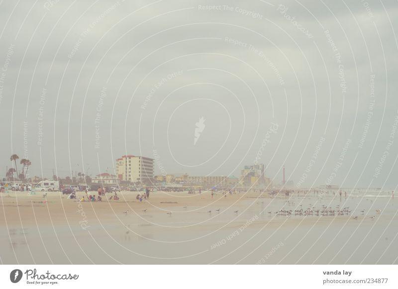 Daytona Beach schlechtes Wetter Nebel Küste Strand Florida USA dunkel Ebbe Atlantik Möwe Wolken Haus Gedeckte Farben Außenaufnahme Textfreiraum oben