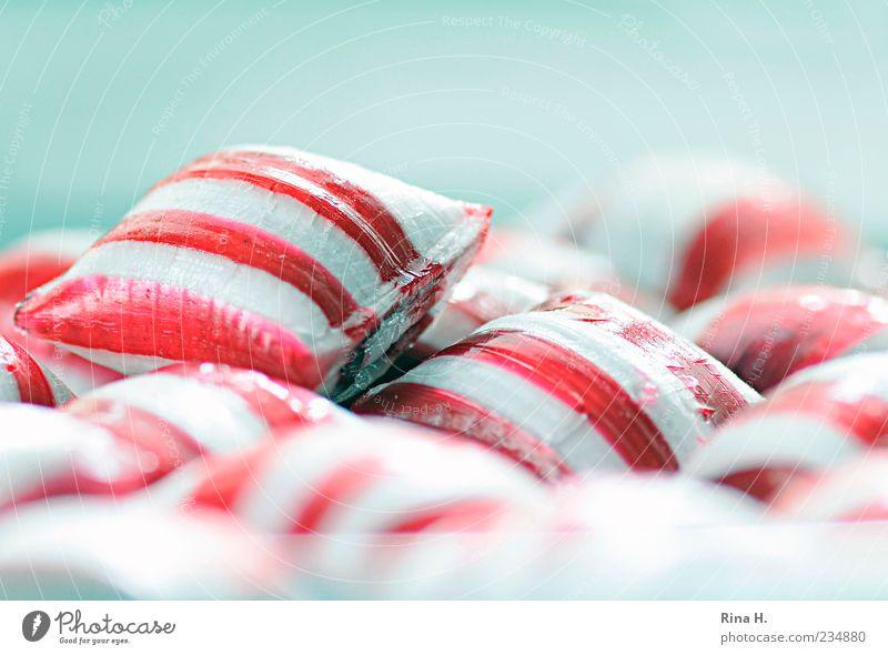 PepperMint II Süßwaren Fröhlichkeit hell süß mehrfarbig rosa weiß Lebensfreude gestreift Bonbon Farbfoto Textfreiraum oben Schwache Tiefenschärfe rot-weiß