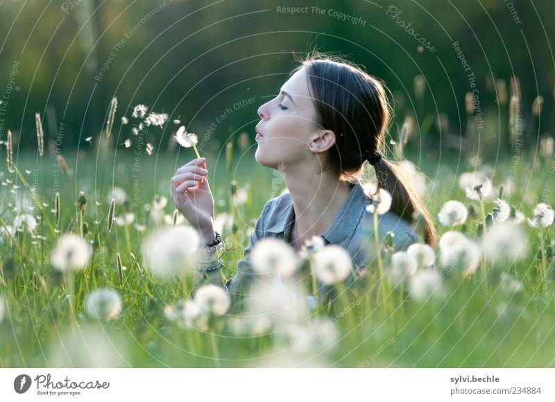 * ° * °° * * ° * Mensch Natur Jugendliche weiß grün schön Pflanze ruhig Erholung Umwelt Leben Wiese feminin Gras Frühling Kopf