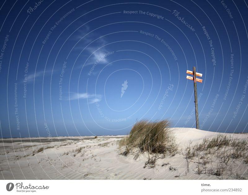 Spiekeroog | Himmel fühlen blau Meer Strand Wolken Ferne Gras Sand Horizont Wellen Wind Schilder & Markierungen Hinweisschild Hügel Idylle Stranddüne