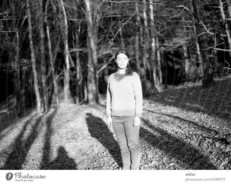 Wald Junge Frau Jugendliche Körper 1 Mensch 30-45 Jahre Erwachsene Natur Sonnenlicht Baum Wildpflanze genießen Blick Lebensfreude Gelassenheit ruhig Traurigkeit