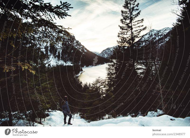 Blick zurück Mensch Himmel Ferien & Urlaub & Reisen Erholung Einsamkeit ruhig Winter Ferne Wald Berge u. Gebirge dunkel Erwachsene Lifestyle Leben Schnee