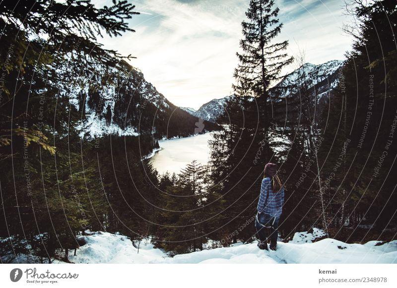 Aussicht am See Lifestyle Stil Wohlgefühl Zufriedenheit Erholung ruhig Freizeit & Hobby Ausflug Abenteuer Ferne Freiheit Mensch 1 Natur Landschaft Winter