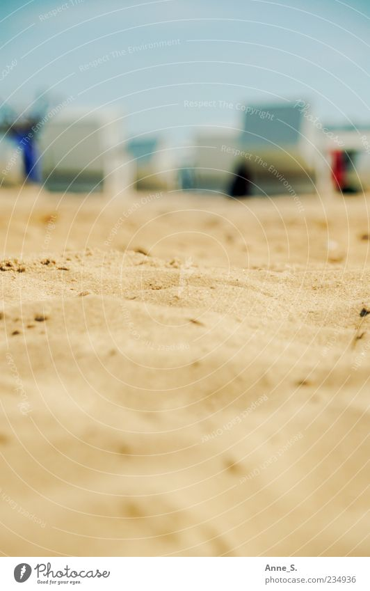 Strandsand Natur Meer Sommer Wärme Sand Küste Glück träumen Stimmung Zufriedenheit Schönes Wetter Ostsee Strandkorb Darß Sandstrand