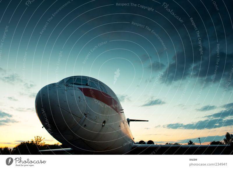 Nachtigall Luftverkehr Umwelt Himmel Wolken Flugzeug Passagierflugzeug Flughafen Flugplatz alt retro Romantik Flugangst Tragfläche frontal Farbfoto mehrfarbig