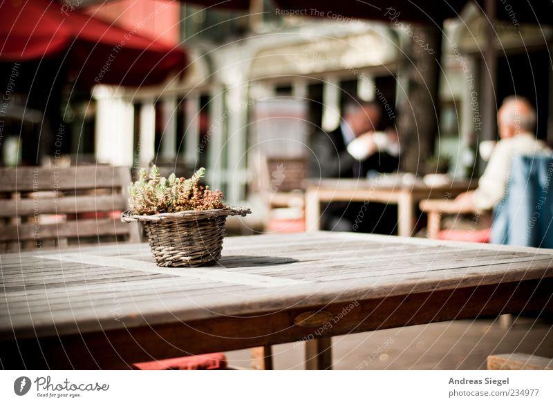 Kaffeepause Mensch Erwachsene Erholung sprechen Holz Freundschaft Zufriedenheit sitzen maskulin Tisch authentisch Dekoration & Verzierung Lifestyle Pause Stuhl