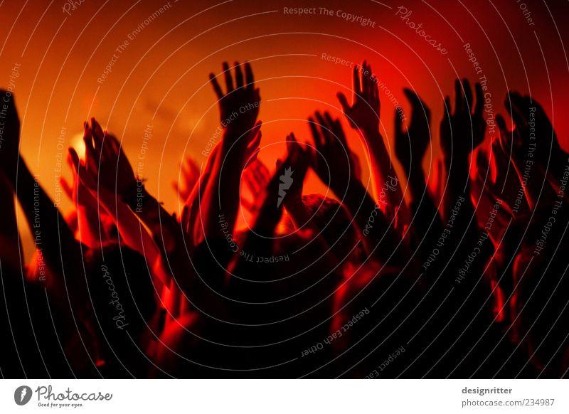 """""""Hosanna"""" Feste & Feiern Arme Hand Finger Menschenmenge Konzert Fan dunkel Zusammensein wild Glück Begeisterung Euphorie Einigkeit Sympathie Hoffnung Glaube"""