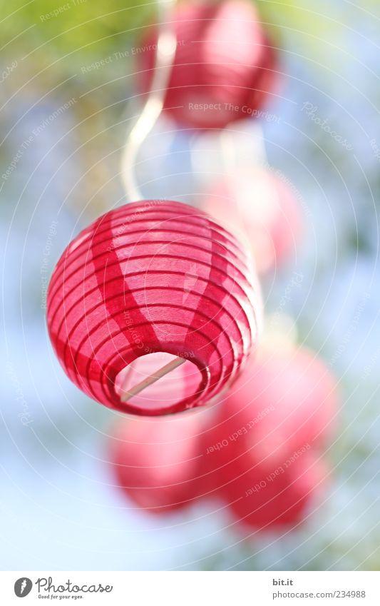 kleines Lämpchen... blau schön Sommer Freude Lampe Party rosa Freizeit & Hobby leuchten Dekoration & Verzierung Geburtstag Lebensfreude Papier rund Kabel Hochzeit