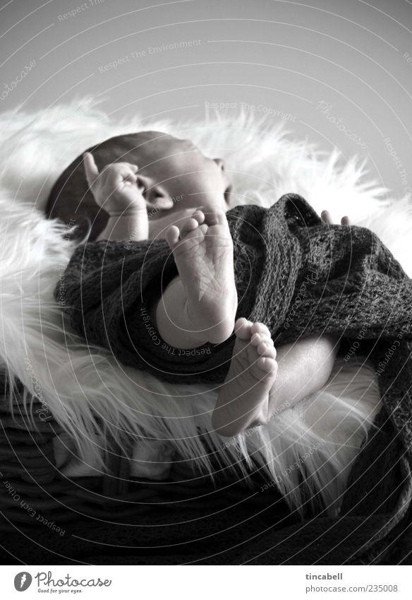 Newborn Baby 1 Mensch 0-12 Monate Beginn einzigartig Leben Innenaufnahme Tag gähnen liegen Zeigefinger schlafen Geborgenheit aufwachen Fuß niedlich Kontrolle