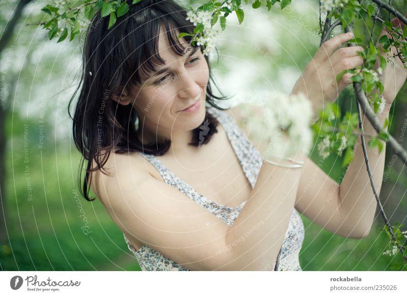 blütenstreicheln. feminin Junge Frau Jugendliche 1 Mensch 18-30 Jahre Erwachsene Natur Frühling Baum Blatt Blüte schwarzhaarig brünett Pony berühren genießen