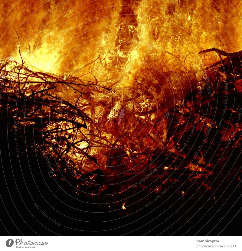 Who by fire Urelemente Feuer heiß hell Wärme gelb rot schwarz analog Tradition Ast brennen Brennholz Farbfoto Außenaufnahme Detailaufnahme abstrakt Muster
