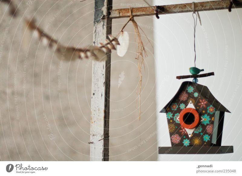 Welcome Home Haus Sammlerstück Beton Zufriedenheit Farbfoto Außenaufnahme Menschenleer Futterhäuschen hängen Schwache Tiefenschärfe geblümt Girlande Wand