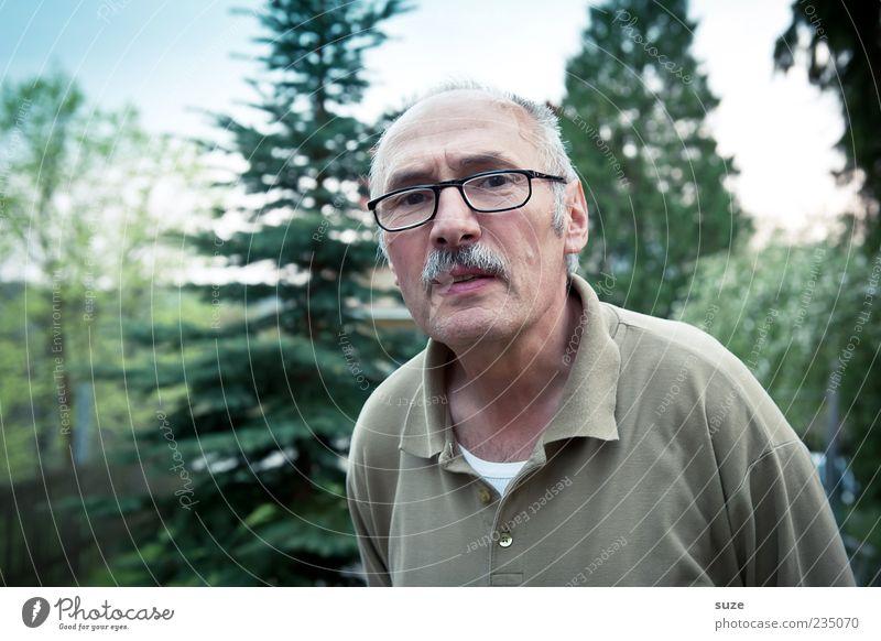 Bausparer Ruhestand Mensch maskulin Mann Erwachsene Senior 1 Baum Brille grün skeptisch Nachbar Bart Misstrauen Farbfoto Außenaufnahme Dämmerung Porträt