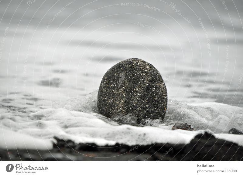 Der Fels in der Brandung Umwelt Natur Urelemente Erde Sand Wasser Sommer Herbst Schönes Wetter Wellen Küste Strand Meer Insel hell schön schwarz weiß Teneriffa