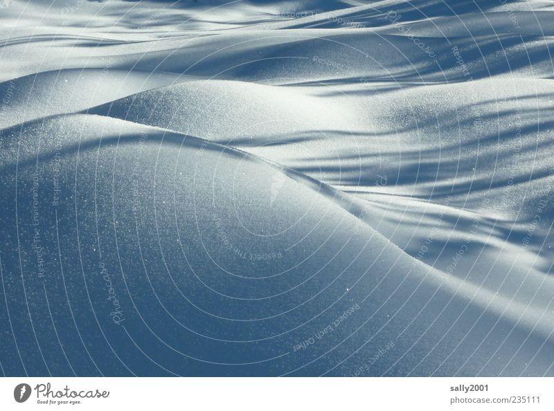 Sanfte eiskalte Hügel Natur Landschaft Erde Winter Eis Frost Schnee Feld Wellen ästhetisch schön weiß Gelassenheit ruhig elegant Idylle Klima Schutz stagnierend