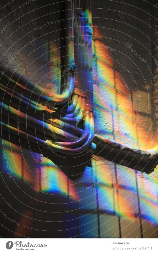 Regenbogen indoor Wand Mauer Kabel Stahlkabel Inspiration Lichtbrechung Lichteinfall regenbogenfarben Aufputzinstallation