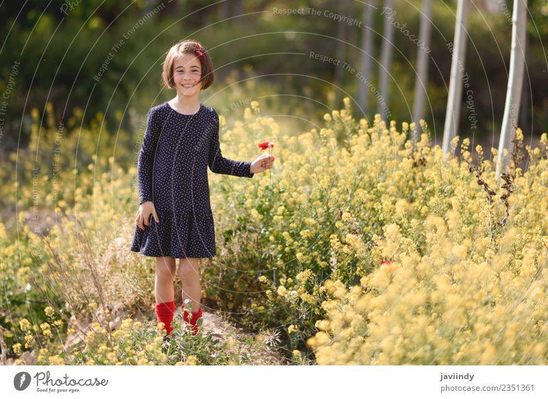 Kleines Mädchen im Naturfeld mit Blumen in der Hand. Lifestyle Freude Glück schön Spielen Sommer Kind Mensch Baby Frau Erwachsene Kindheit 1 3-8 Jahre Gras