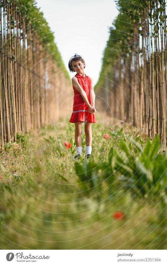 Kleines Mädchen, das im Naturfeld spazieren geht und ein schönes rotes Kleid trägt. Lifestyle Freude Glück Spielen Sommer Kind Mensch feminin Baby Frau