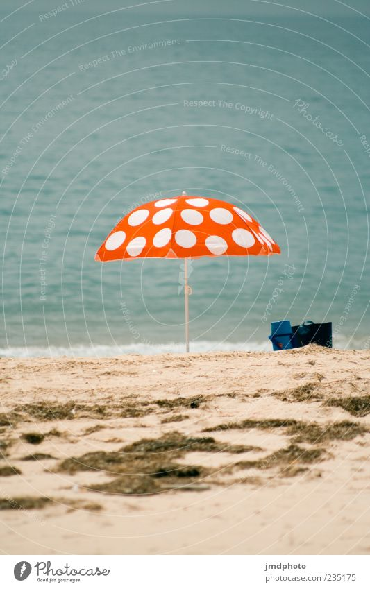 Sonnenschirm Fliegenpilz Wasser Ferien & Urlaub & Reisen Meer Sommer Strand ruhig Erholung Sand Küste Ausflug Tourismus Pilz Sonnenbad Sommerurlaub Wetterschutz