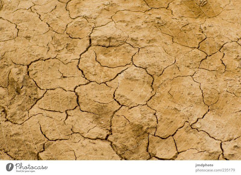 trockene Erde Umwelt Natur Urelemente Sommer Klima Klimawandel Wetter Dürre Feld Wüste Sand heiß Wärme braun Farbfoto Außenaufnahme abstrakt Muster