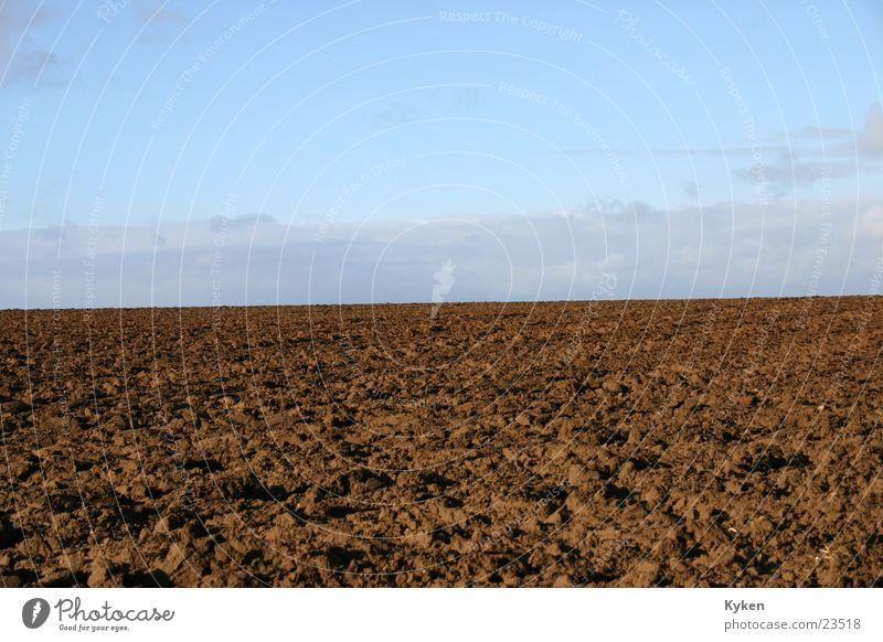 Mutter Erde Feld Wiese braun Horizont Ackerbau Himmel blau Kontrast Natur