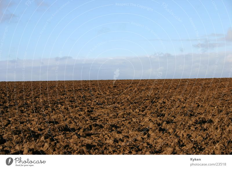 Mutter Erde Himmel Natur blau Wiese Horizont braun Feld Ackerbau