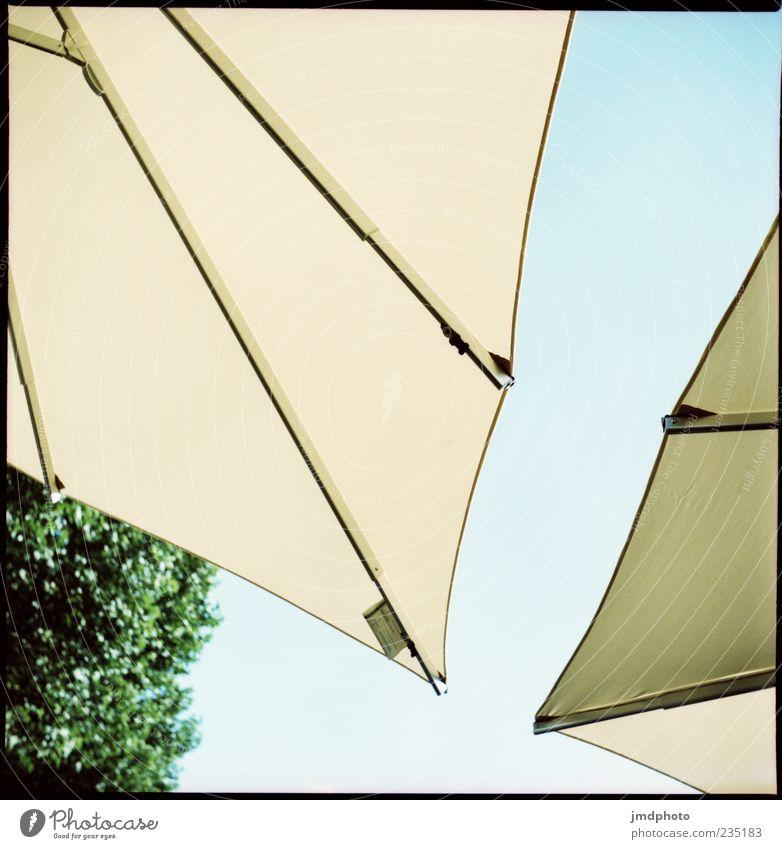 Sonnenschirme Himmel Sommer Stil Design
