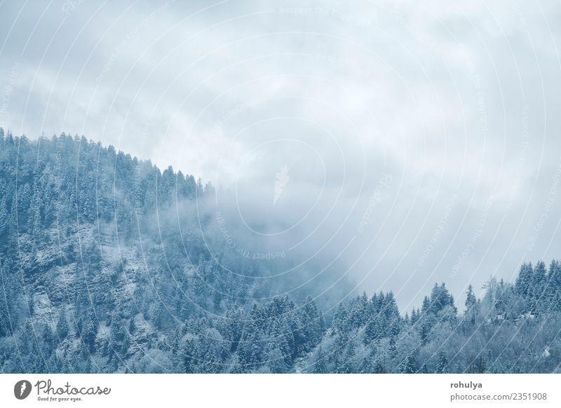 Winternebel über Bergen, Bad Hindelang, Deutschland Ferien & Urlaub & Reisen Schnee Berge u. Gebirge wandern Natur Landschaft Wetter Nebel Schneefall Wald Hügel