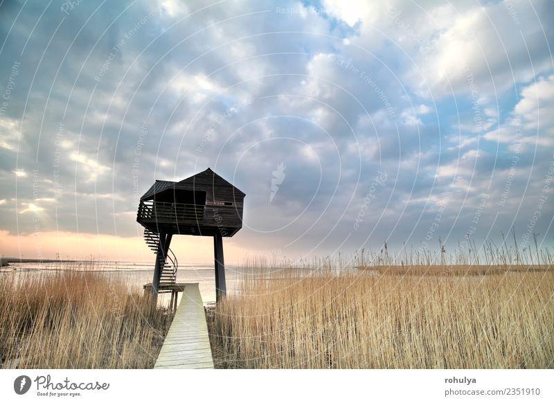 Holzaussichtsturm über dem Himmel, Niederlande Ferien & Urlaub & Reisen Natur Landschaft Wolken Horizont Frühling Wetter Schönes Wetter Küste Gebäude