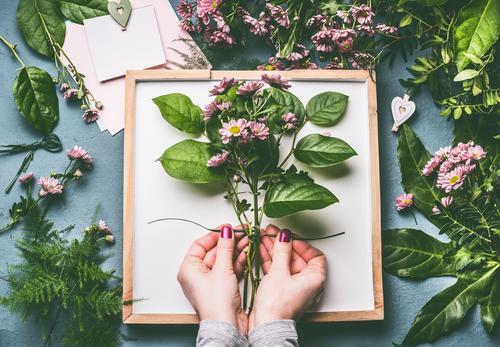 Weibliche Hände machen Blumenstrauß Stil Design Freizeit & Hobby Mensch feminin Frau Erwachsene Hand Pflanze Dekoration & Verzierung trendy grün rosa
