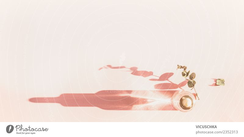 Serum Kosmetik Flasche on rosa Hintergrund kaufen Stil Design schön Gesundheit Spa Natur Pflanze Dekoration & Verzierung Hintergrundbild Pipette Gesichtspflege