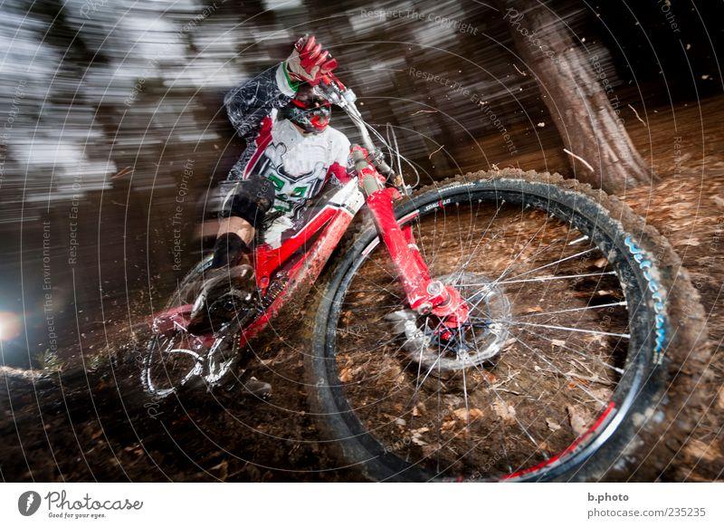 downhill speed Sport Sportler Fahrradfahren Mountainbike Mountainbiking Mensch maskulin Junger Mann Jugendliche Erwachsene 1 18-30 Jahre Baum Wald Waldboden