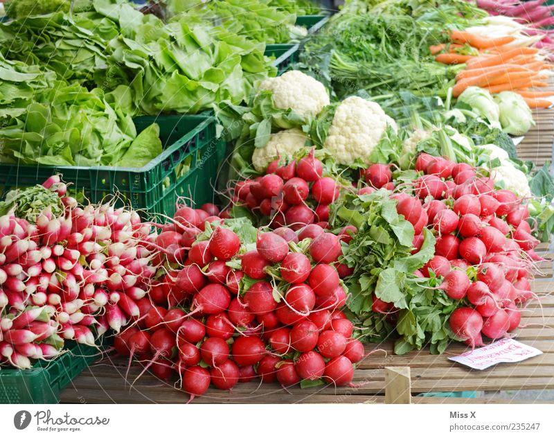 Radieschen Lebensmittel Gemüse Salat Salatbeilage Ernährung Bioprodukte Vegetarische Ernährung frisch Gesundheit lecker saftig grün rot Wochenmarkt Gemüsemarkt