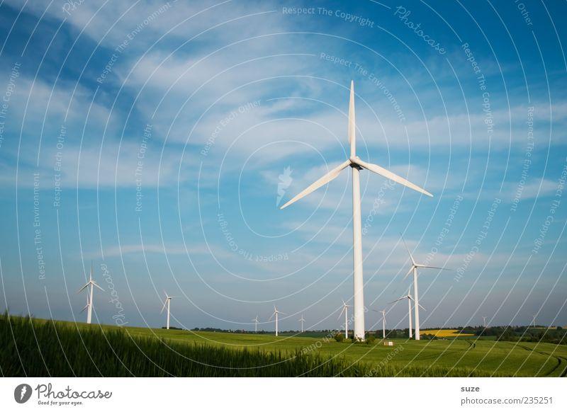 Viel Wind um nix Energiewirtschaft Erneuerbare Energie Windkraftanlage Umwelt Natur Landschaft Luft Himmel Klima Klimawandel Schönes Wetter Wiese Feld blau