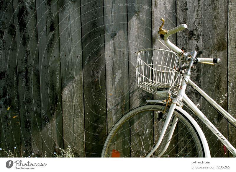 Abgestellt Holz grau Fahrrad authentisch Wandel & Veränderung Vergänglichkeit Hütte Vergangenheit Verfall Holzbrett parken Nostalgie Anschnitt Holzwand Haus