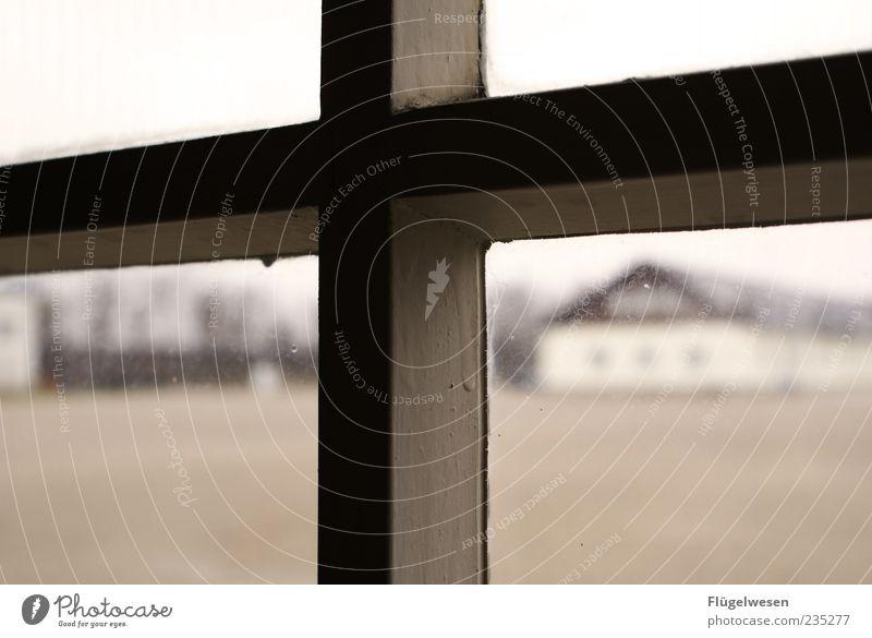 Gegen das Vergessen Fenster Traurigkeit Angst trist bedrohlich historisch Todesangst gruselig Denkmal Kreuz Verzweiflung Krieg Fensterblick Ekel hässlich