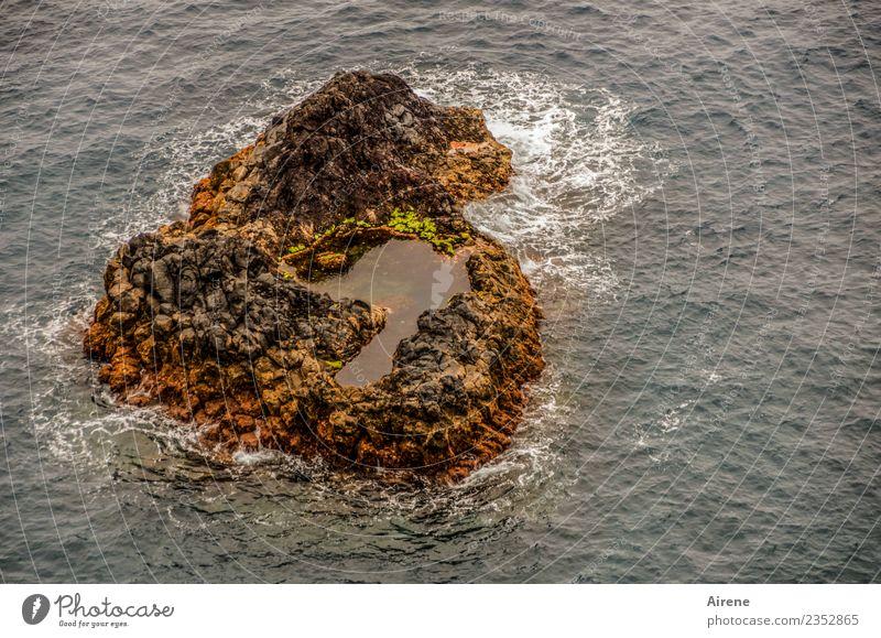 1100 | herz-lichen Dank Ferien & Urlaub & Reisen Meer Urelemente Wasser schlechtes Wetter Wind Sturm Wellen Insel Teich Madeira Herz dunkel gruselig wild braun