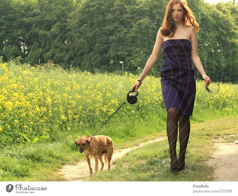 sie und der dackel feminin Junge Frau Jugendliche 1 Mensch 18-30 Jahre Erwachsene Kleid Strumpfhose Sonnenbrille brünett langhaarig Hund Tier ästhetisch