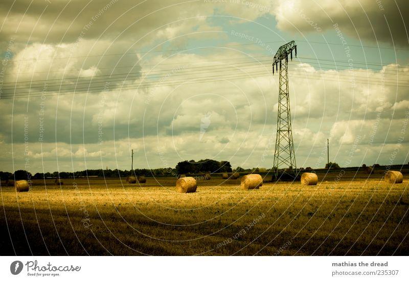 SONNENFLECK Energiewirtschaft Umwelt Natur Landschaft Himmel Wolken Horizont Sommer Schönes Wetter Wind Baum Feld schön Strohballen Ernte Strommast hell Licht