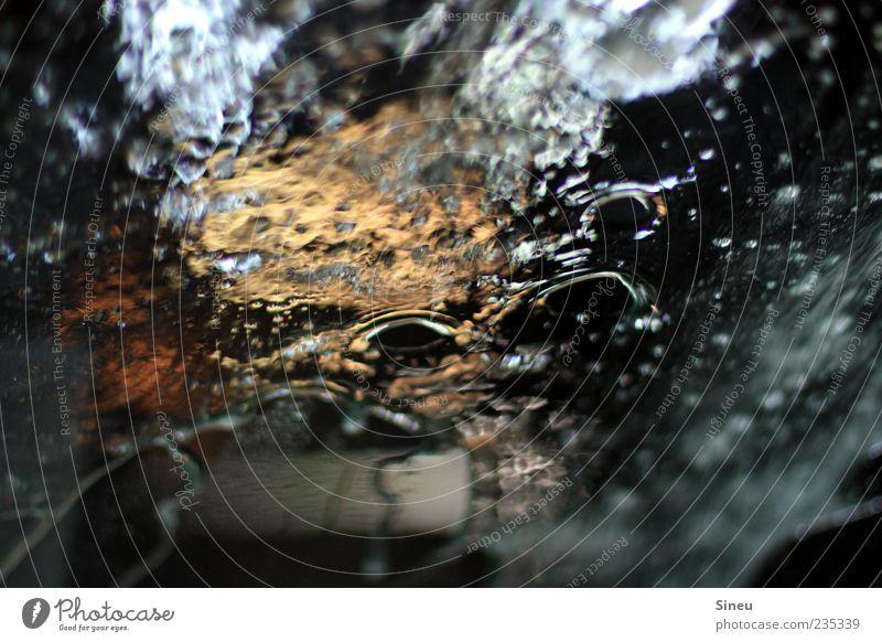 Working at the carwash... Autofenster nass Wassertropfen Reinigen Klarheit Flüssigkeit feucht Autowäsche Windschutzscheibe Reflexion & Spiegelung Wasserspritzer