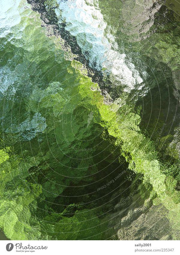 Fenster Undurchsichtig undurchsichtig grün himmel ein lizenzfreies stock foto photocase