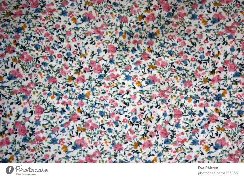 Blumen Muster weiß blau schön Farbe rosa frisch Fröhlichkeit ästhetisch weich Dekoration & Verzierung Kitsch Stoff niedlich Freundlichkeit viele