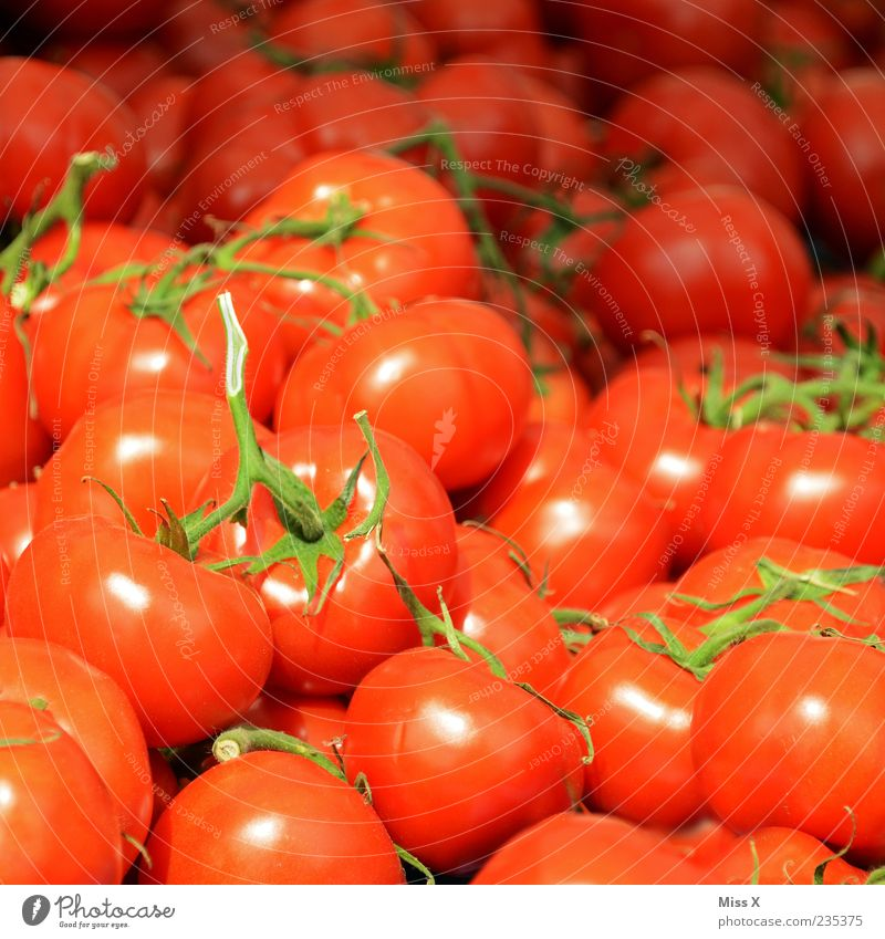 Tomatäh rot Ernährung Lebensmittel frisch liegen rund Gemüse lecker Duft viele Tomate Bioprodukte saftig Vegetarische Ernährung Strauchtomate