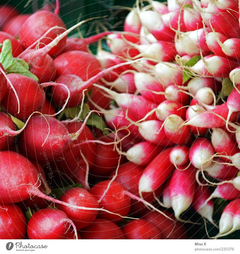Radieschen Lebensmittel Gemüse Ernährung Bioprodukte Vegetarische Ernährung frisch klein lecker rot Rettich Farbfoto mehrfarbig Nahaufnahme Muster